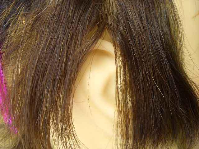 髪の毛の状態